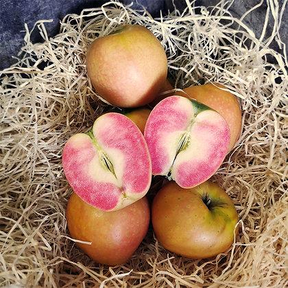 Pomme Kissabel | France | 500g