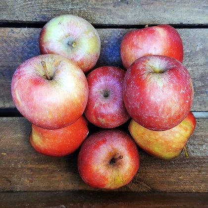 Pomme rouge stark | Provence | 1kg