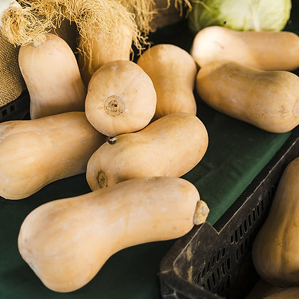 Courge butternut | France | 1 kg