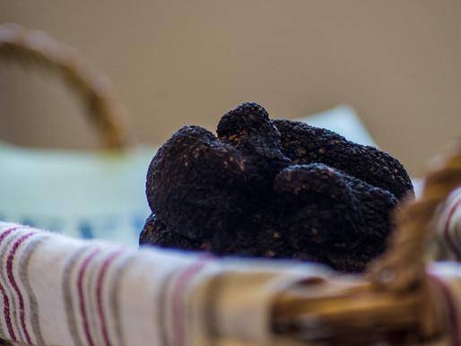 Glace étonnante à la truffe