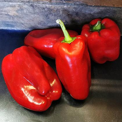 Poivron Rouge | Espagne | 1kg