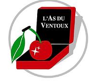 logo ass.png