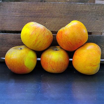 Pomme reine des reinettes lité | France | 500g