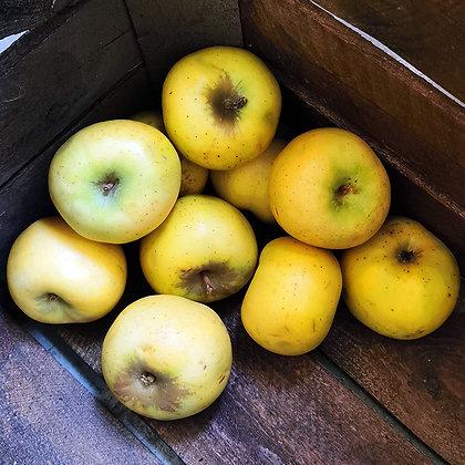 Pomme chanteclerc   France   1kg