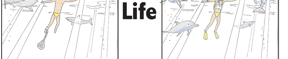 Life - check out the video in the gallery