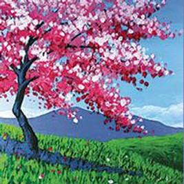 Senior's Paint FREE @ Home Kit