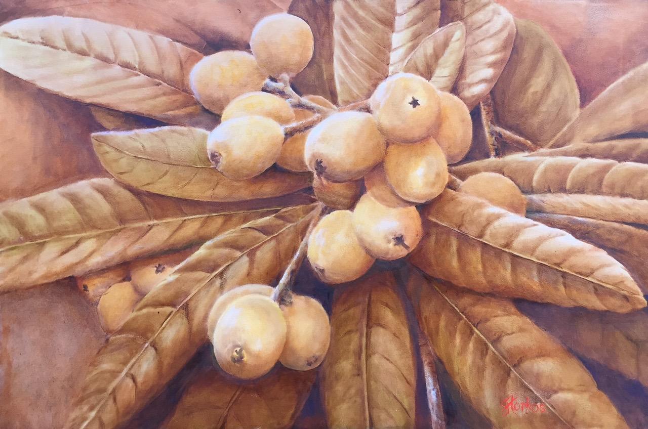 The Loquat Tree