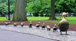 Duck walk.jpg