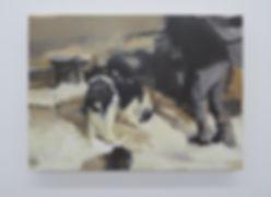 BozbiciuAlin_Dog(01).jpg