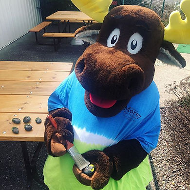 What could Morey the Moose be up to.....