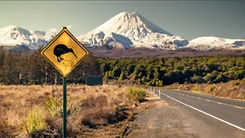 Kiwi Sign and Tongariro.jpg