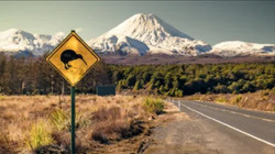 Kiwi Sign and Tongariro
