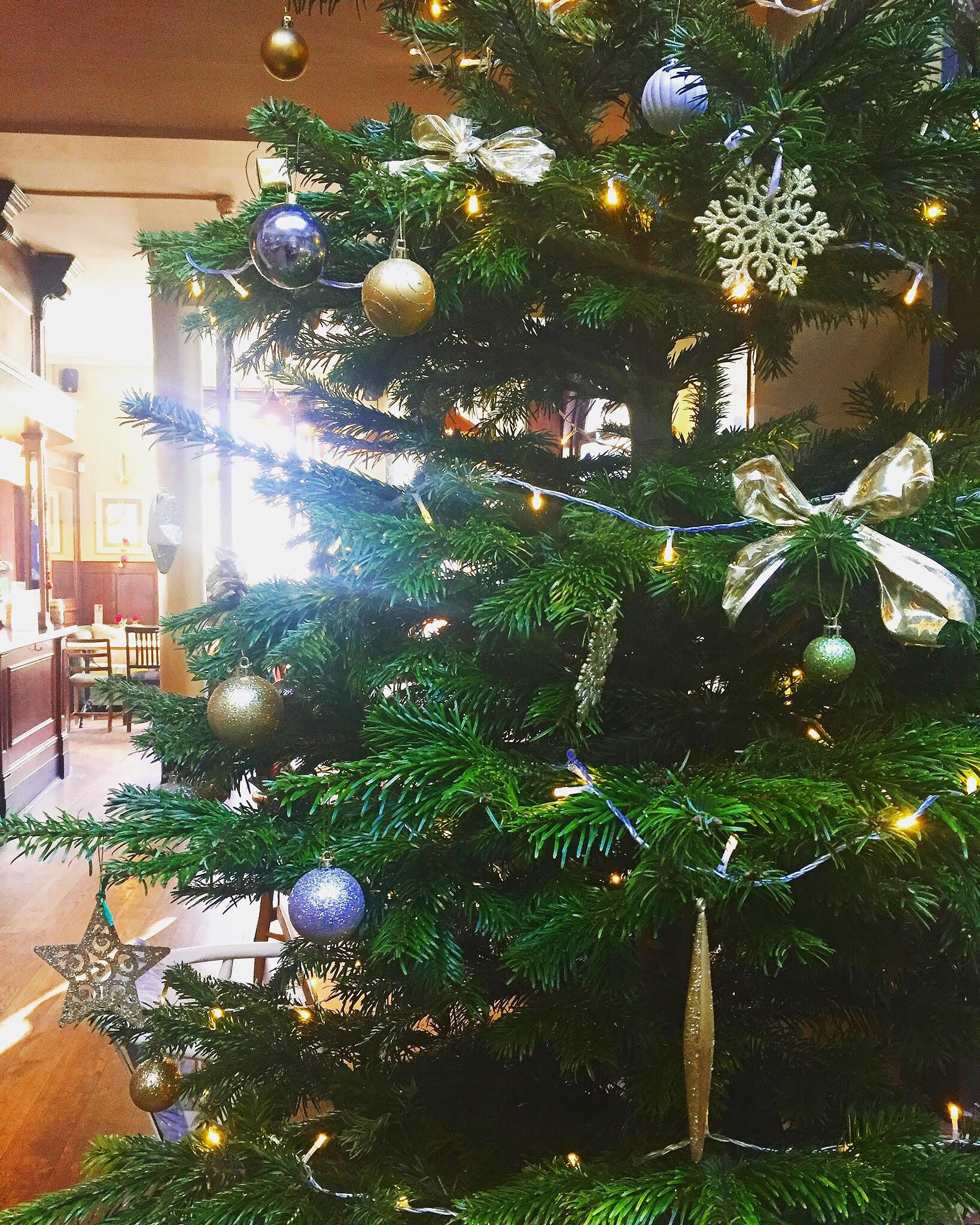 Rock around the Christmas tree. . .