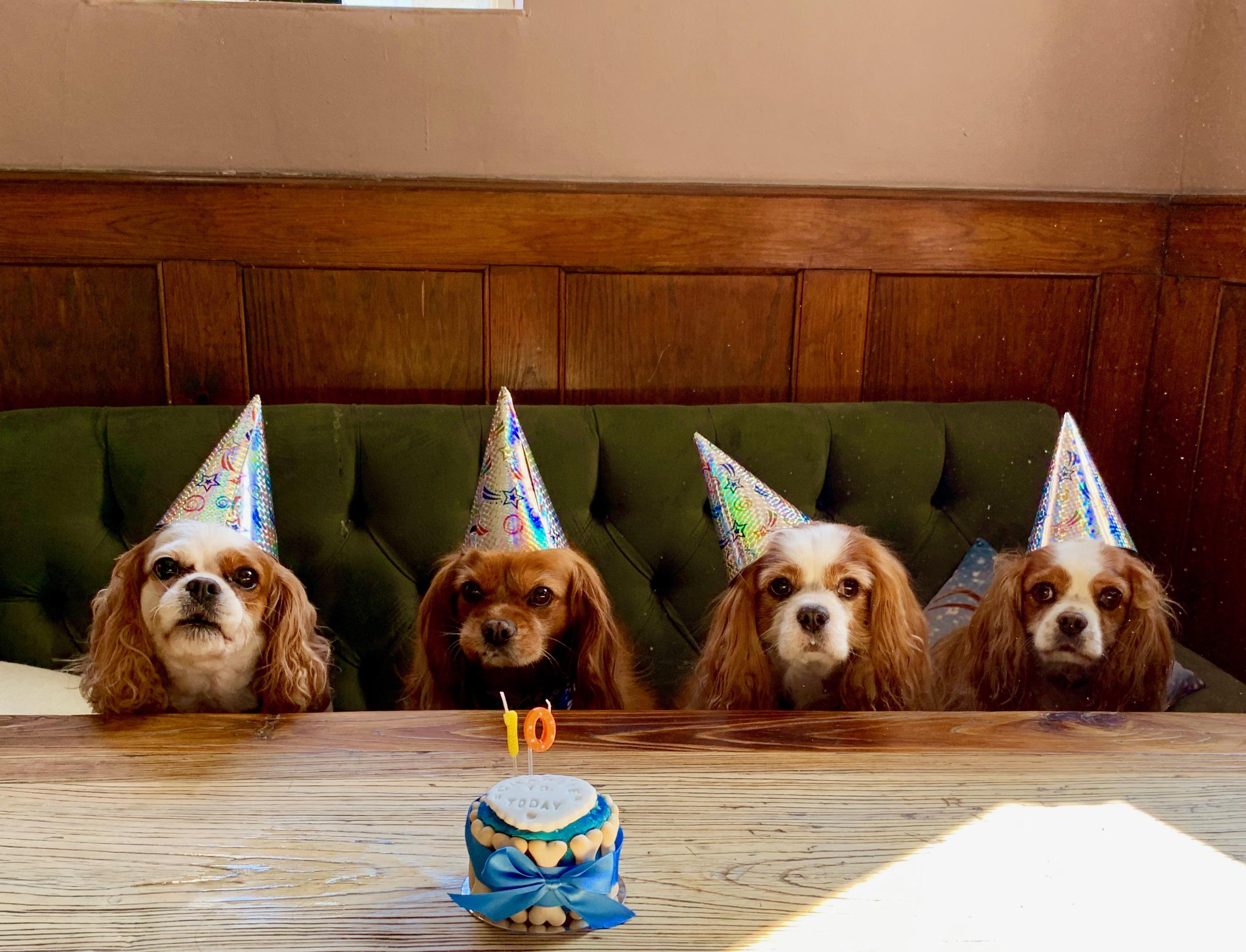 Parties. . .