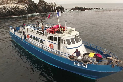 Anacapa/Santa Cruz Island 3 dive trip aboard the Spectre September 22