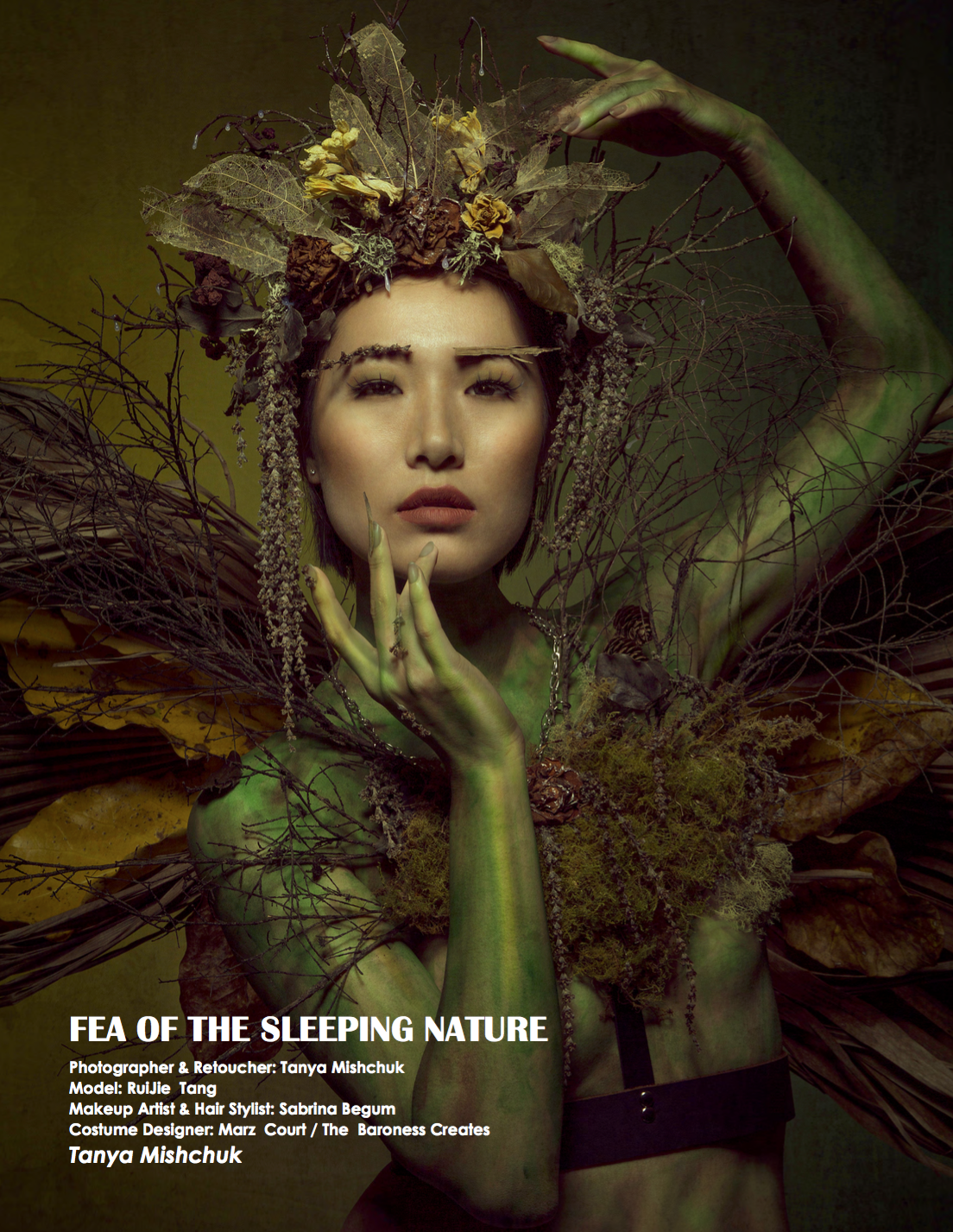 FEA OF THE SLEEPING NATURE