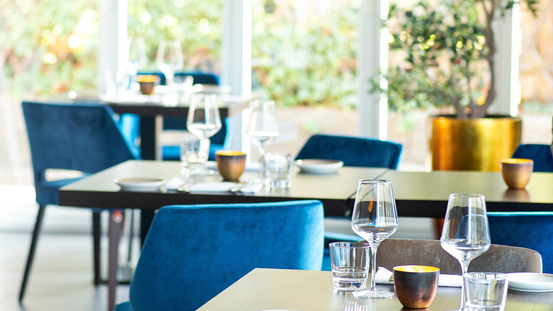 Salir_Innenaufnahme_Restaurant_Zuerich_d