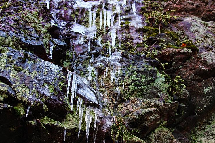 Glacial Freeze