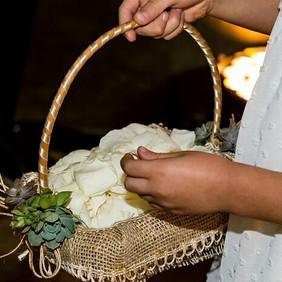 Daminha - cesta com suculentas