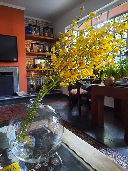 Vaso Bola com Orquídea