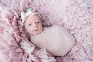 Bonariusfotografie newborn-1.jpg