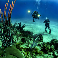 Divers with Flashlight.jpg