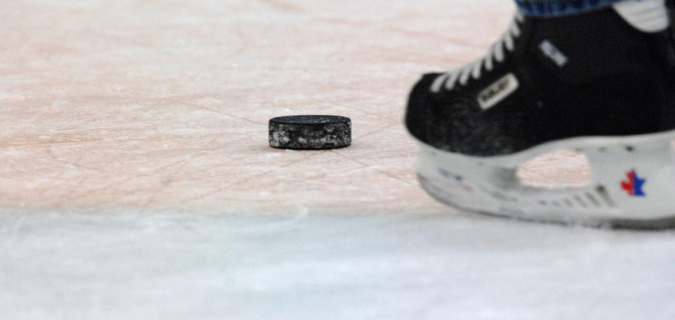 Hockey Puck.jpg