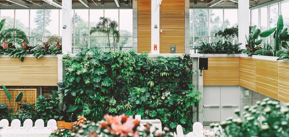 Indoor Gardens.jpg