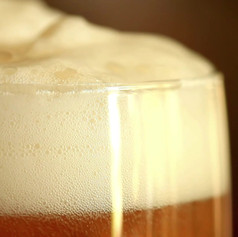 draught lager
