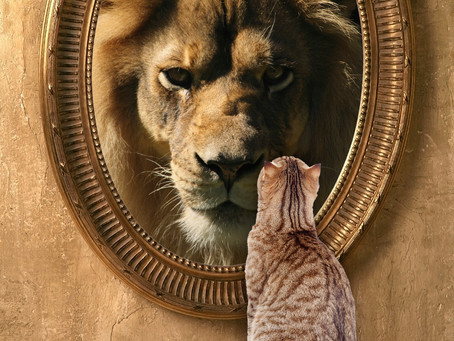 Take a look in the Mirror...
