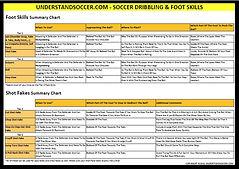 Dribbling_&_Foot Skills Free Summary.JPG