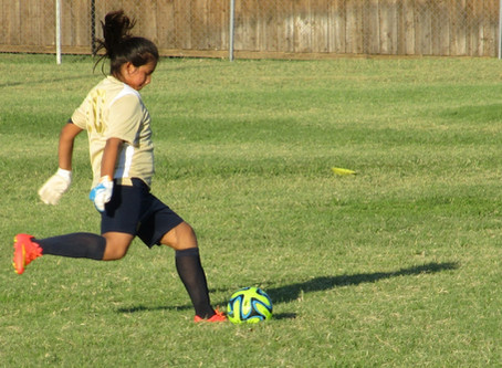 Soccer Passing: Technique for Body PositionandBall Placement