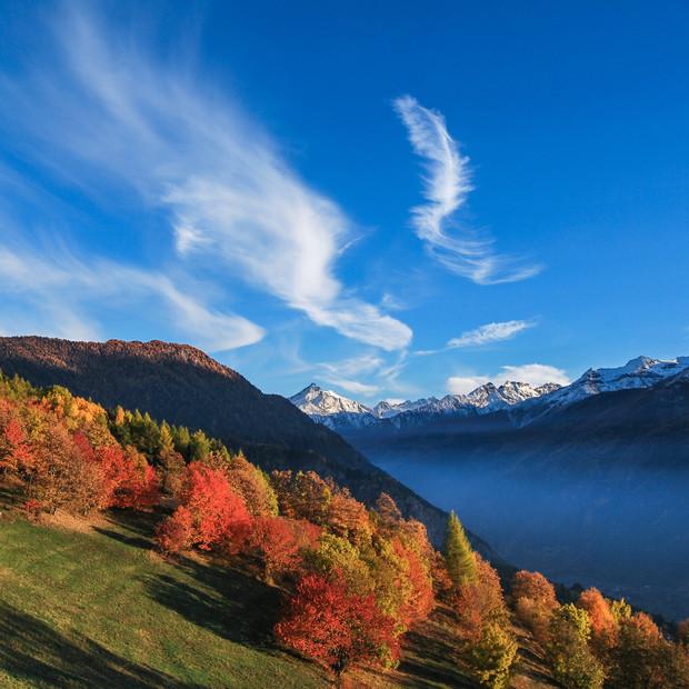 Autumn Beauty | La Salle
