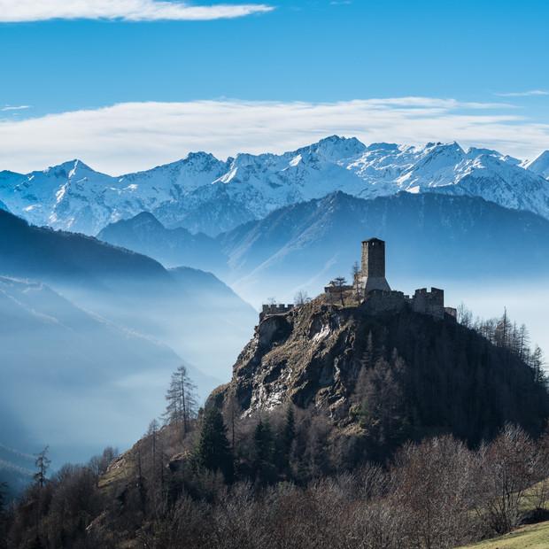 The Castle | Graines