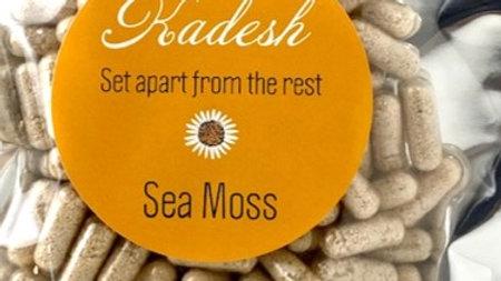 Sea Moss Capsules