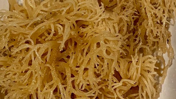 Raw Sea Moss