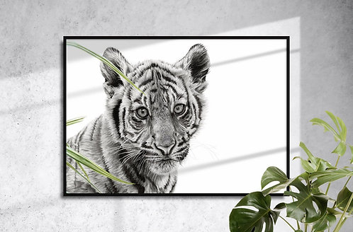 Tiger Cub by Brandon Andrews Limited Edition Giclée Print