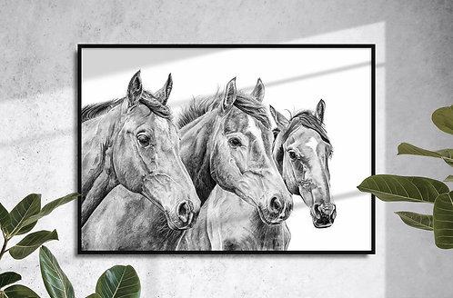 Horses Giclee Print by Brandon Andrews