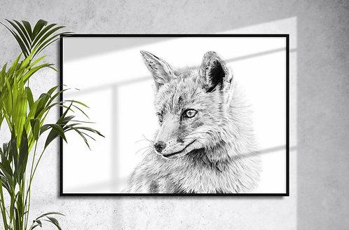 Fox Giclee Print by Brandon Andrews