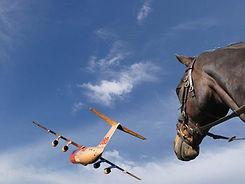 Horse and plane1.jpg