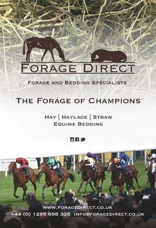Forage Direct | 2021 | OB 1-4 | 88mm x 1