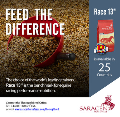 Saracen | 2021 | Feed The Difference | T