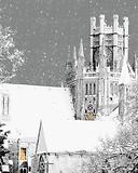 octagon snow 8x10.png
