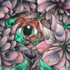 """""""Hidden from View"""""""