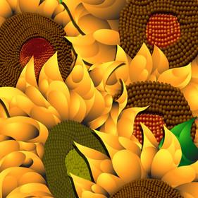 """Sun Flowers"""
