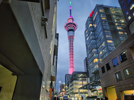 Reasons You Don't Want To Miss Visiting Auckland