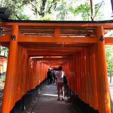 Shinto Gate Kyoto Japan.jpg
