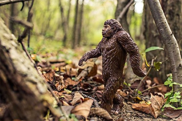 plastic bigfoot doll posed like walking through woods