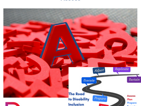 Assess - How Disability Inclusion APPEARS™