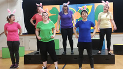Playbox: All About the Bunny